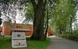 Taller: realiza un pequeño horno solar en el Aula Didáctica de La Grajera