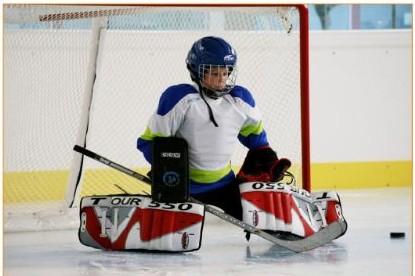 Disfruta del deporte del hockey hielo en Lobete