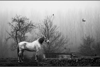 Exposición de fotografías de La Rioja