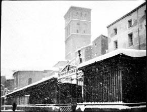Fotografías del Logroño de 1900
