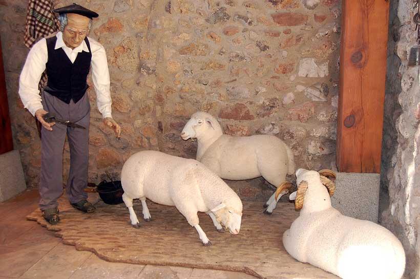 Museo-rancho-esquileo-brieva