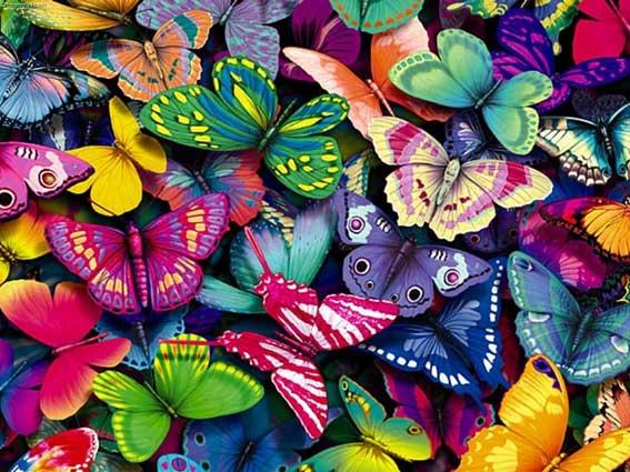 Taller de manualidades: mariposas