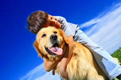 Organizar un viaje con niños y animales