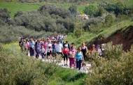Este domingo, Paseo Saludable a La Grajera