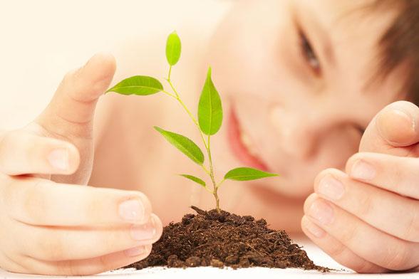 Talleres de agricultura ecológica en Espacios Verdes