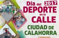 Calahorra celebra el 'Día del deporte en la calle'