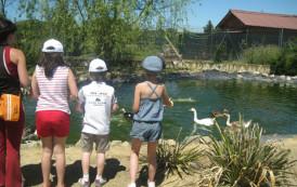 Rioja Natura, parque zoológico en Santo Domingo de la Calzada