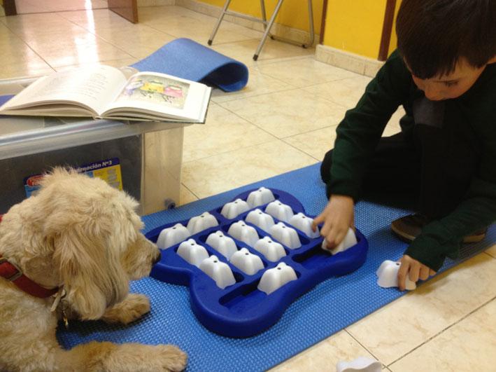 Niños y animales juegan juntos