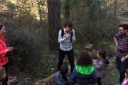 Excursión con niños a Sierra Cebollera: El bosque mágico que cuenta historias
