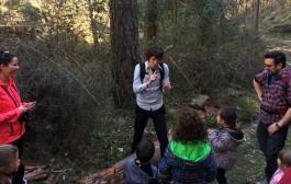 Un paseo por el bosque y leyendas de pastores