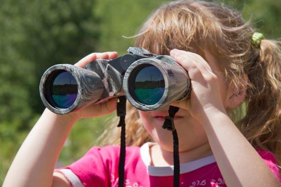 Observación y anillamiento de aves en la Laguna de Hervías