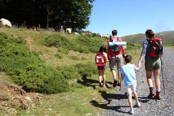 Paseo guiado para familias por Sierra Cebollera