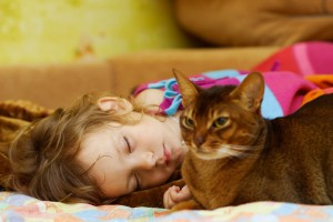 Juegos seguros entre niños y gatos. Perrygatos