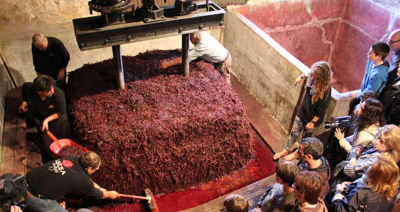 Bodegas Lecea organiza su XI Fiesta del Pisado de la Uva