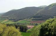 San Millán celebra el Día del Patrimonio Mundial
