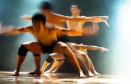 Exhibición de danzas del mundo, en Logroño