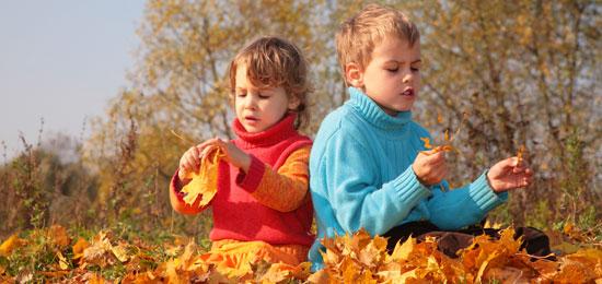 Reciclamos hojas de árboles en Espacios Verdes