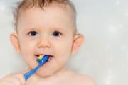 La aparición de los primeros dientes