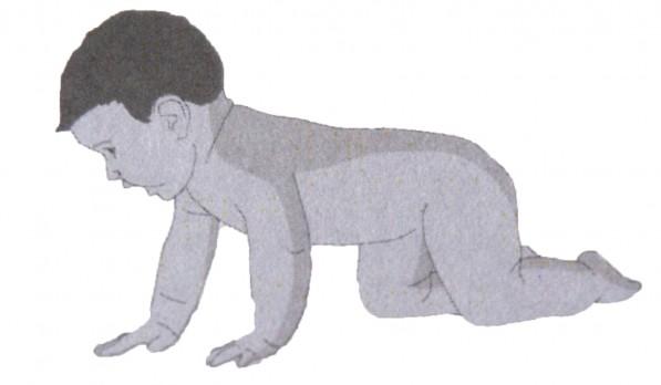 baby shiatsu posterior