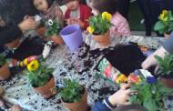 Taller de primavera en Espacios Verdes