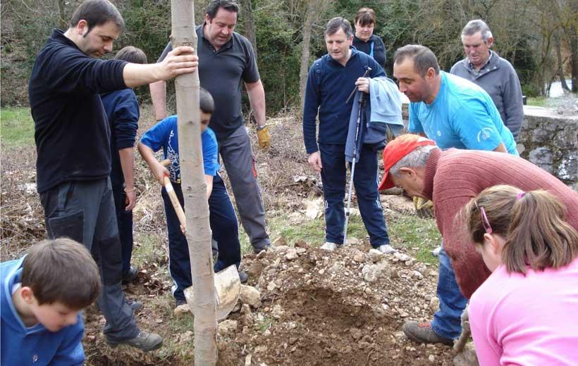 Día del Árbol en Torrecilla en Cameros