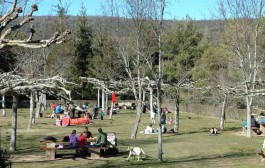 Espacios para ir de pícnic: Ribavellosa