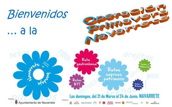 Primavera en Navarrete