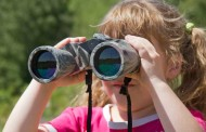 Observación de aves en los Sotos de Alfaro