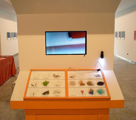 Micromundo-casa-Ciencias-expo