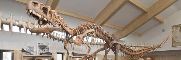 circuito_paleontologico barranco perdido