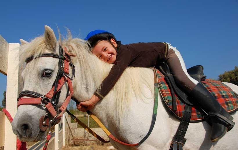 Campamentos de equitación e inglés en Cenicero