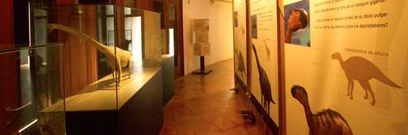 museo cretacico barranco perdido