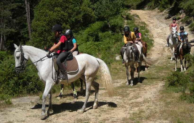 Campamentos de equitación e inglés