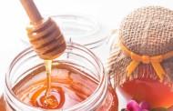 Conviértete en apicultor en la Biotienda de Espacios Verdes
