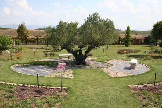 jardin-botanico-de-la-rioja-4