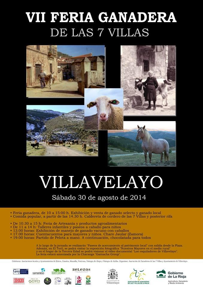 Feria Ganadera 7 villas Villavelayo 2014