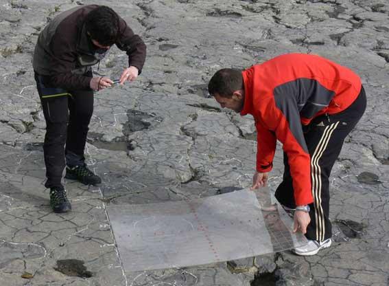 Paleontologo-en-Igea