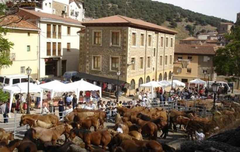 Feria de ganado en Ortigosa