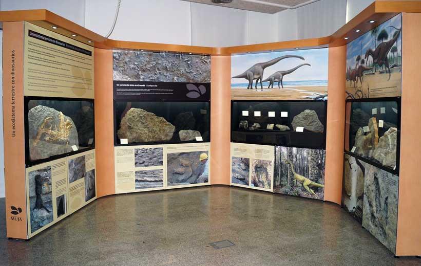 Visitas comentadas a la exposición de los dinosaurios