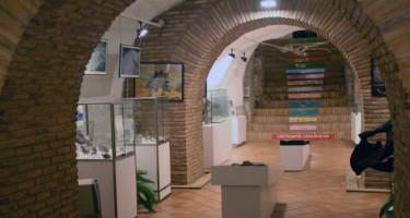 Museo-Ciencias-Naturales-Arnedo