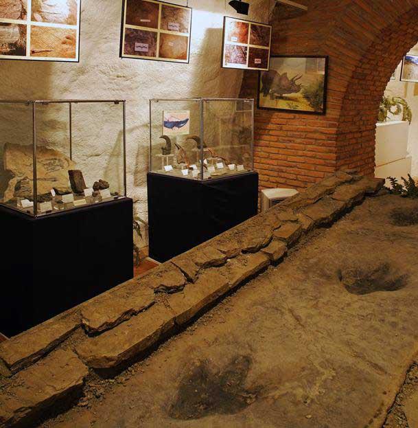 Museo-Ciencias-Naturales-Arnedo2