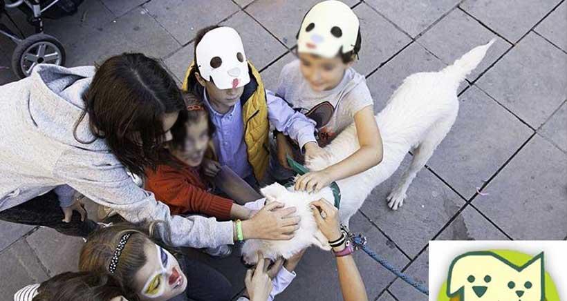 La Protectora organiza el VII Salón de adopción de animales