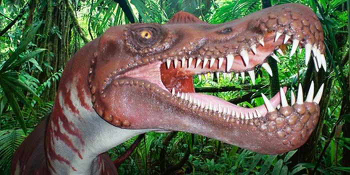 Centro-paleontologico-Igea