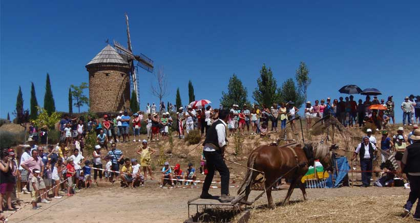 11ª Fiesta de la Molienda en el Molino de Viento de Ocón