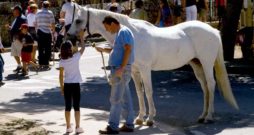 Paseos a caballo en Ventrosa de la Sierra