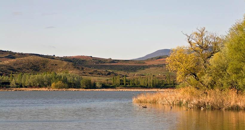 Talleres para conocer la fauna y flora del humedal de La Grajera