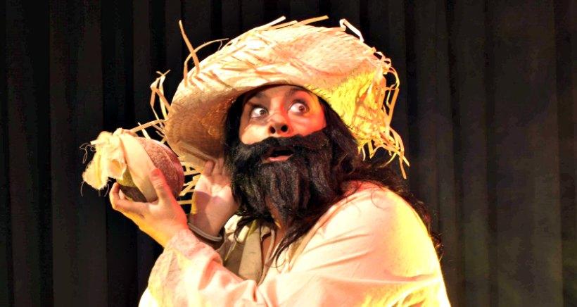 Teatro infantil 'La maldición de los piratas'