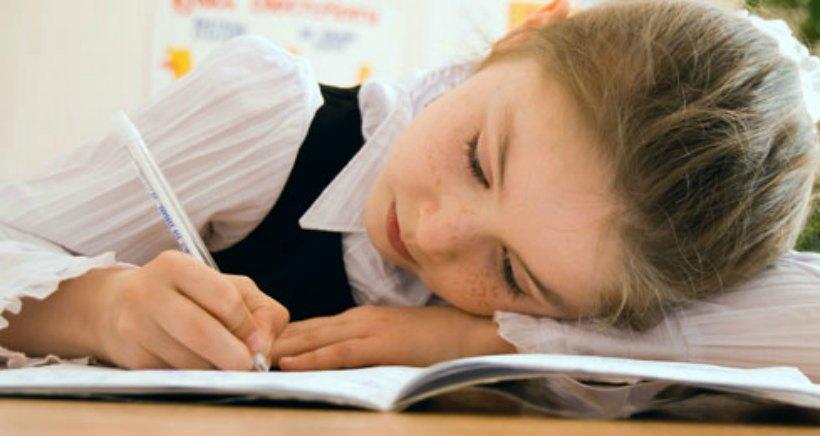 Concurso infantil de poesía: Chiquipoetas Ibercaja