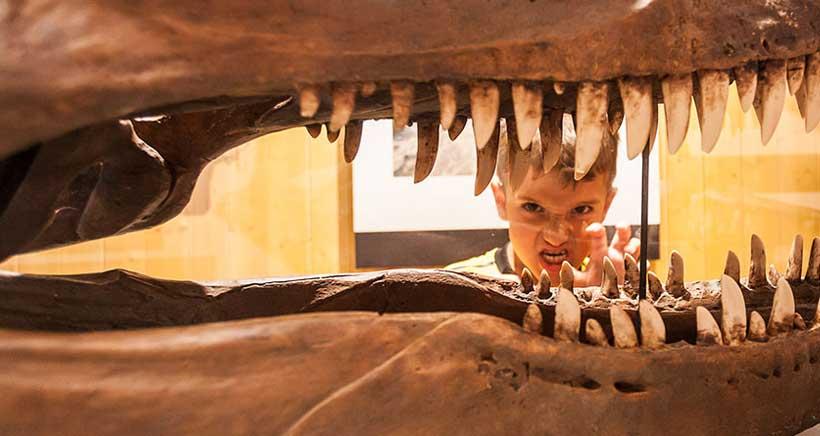 El Barranco Perdido, sus dinosaurios y sus piscinas te esperan en Enciso