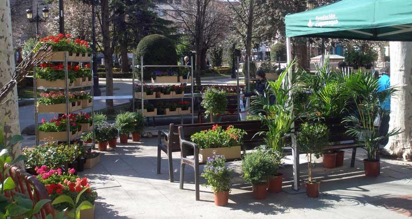 Exhibición y venta de plantas 'Made in La Rioja', en El Espolón